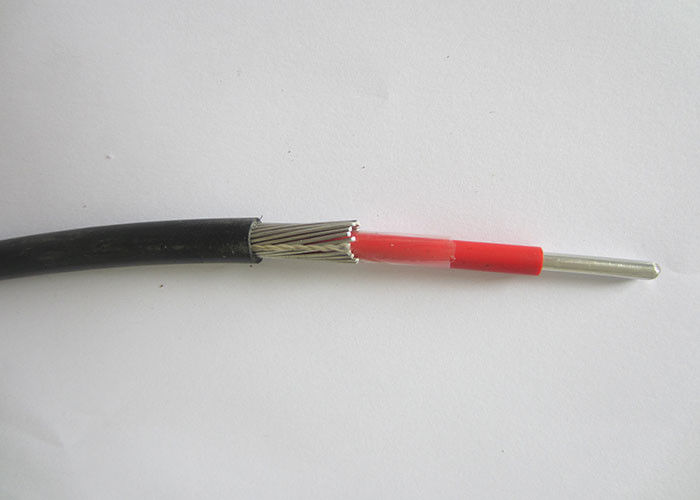 XLPE Insulation HDPE Sheath Concentric Cable 1000V Aluminum / Copper Conductor